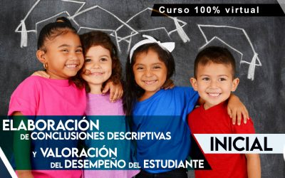 Conclusiones descriptivas – Inicial