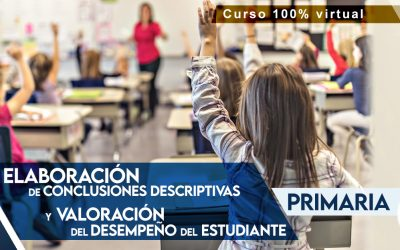 Conclusiones descriptivas – Primaria